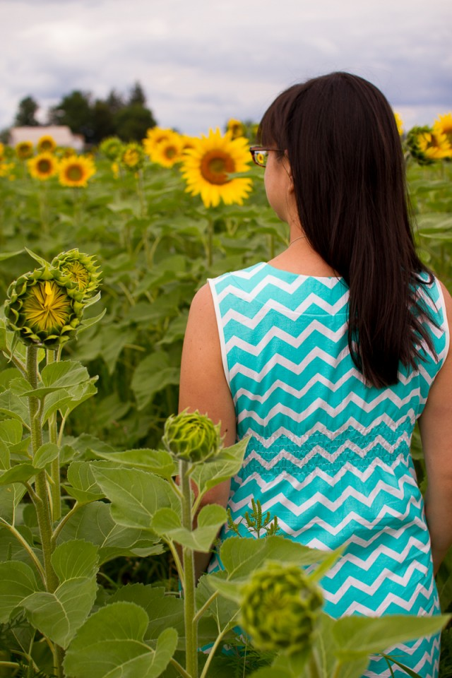 chevron washi dress back