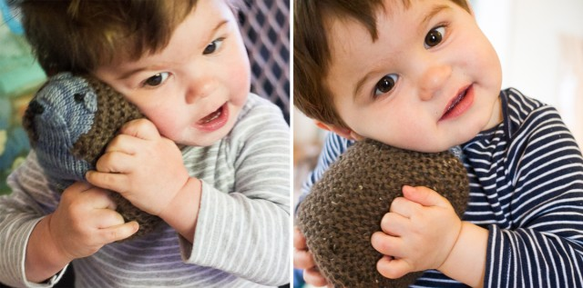 babies love hedgehogs!